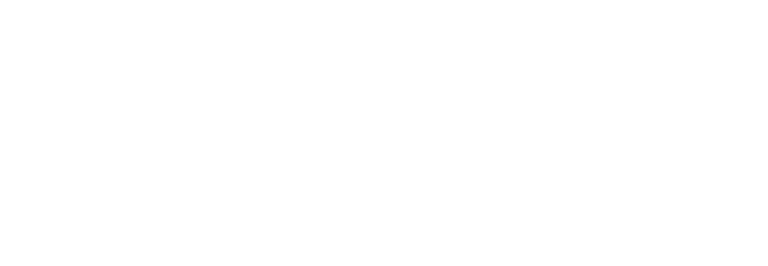 The EM Pulse